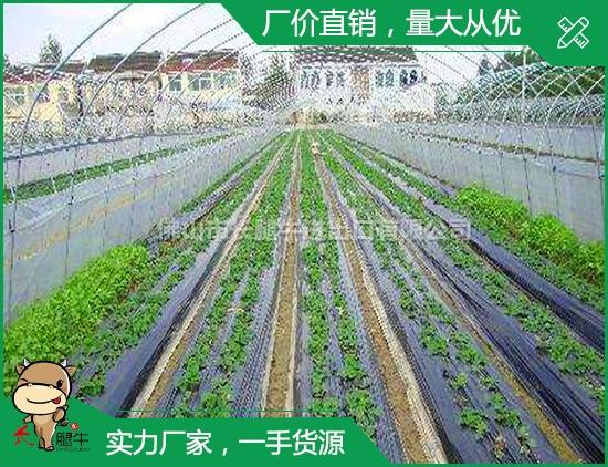 中山农用膜